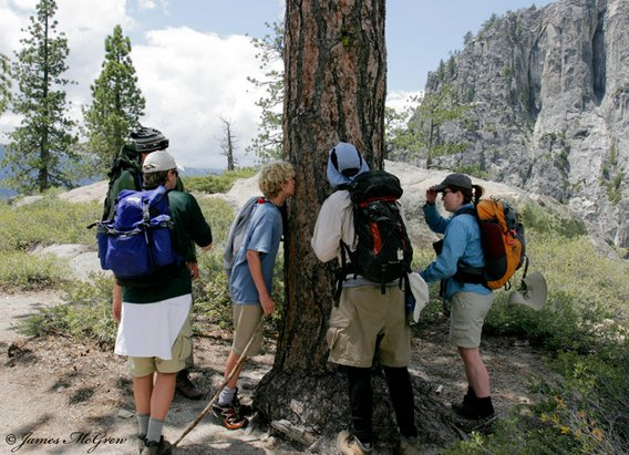 Yosemite Nature Tours