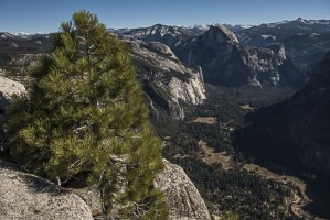 Yosemite Name Changes