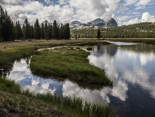 Yosemite-TuolumneRiver-Wilderness-YExplore-DeGrazio-JUL2015