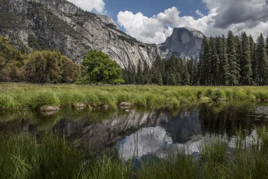 Yosemite Half Dome Cook's Meadow