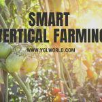 Smart Vertical Farming   BeyondERP