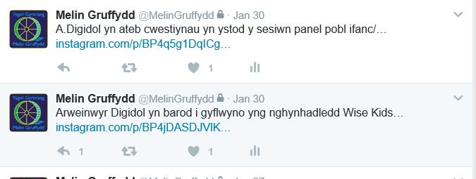 Cynhadledd Wisekids 30.1.17 3