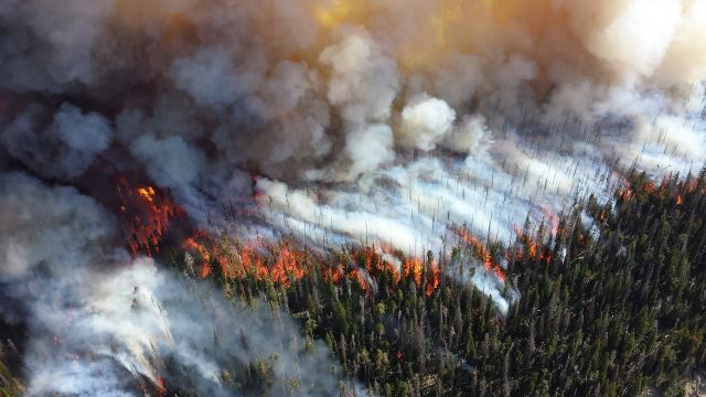 wildfire photo news