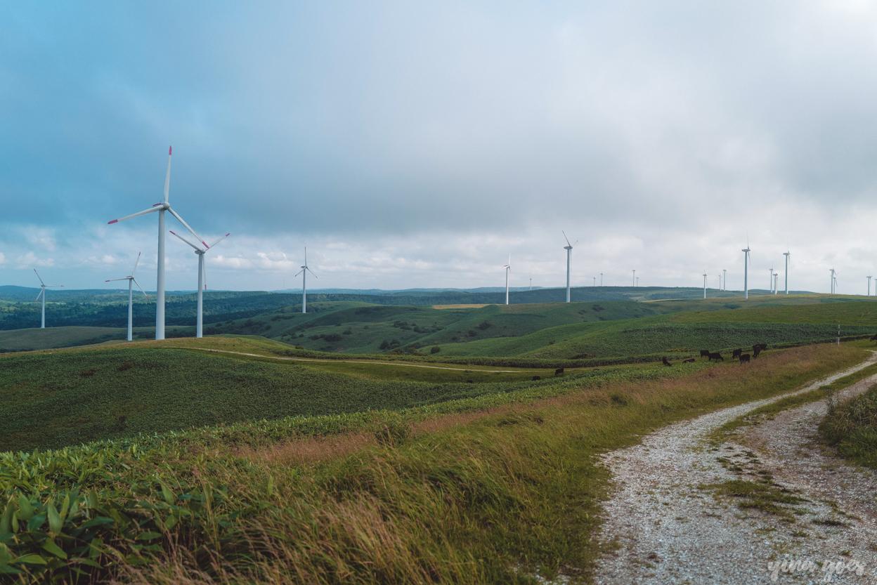 soya hills wind turbines