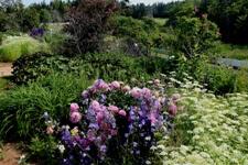 Blog86_Garden
