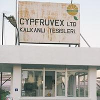 cypruvex