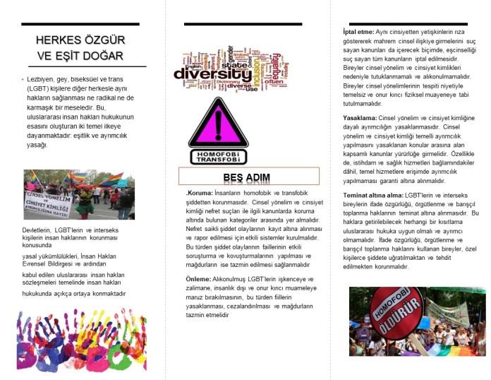 Envision Diversity (2)