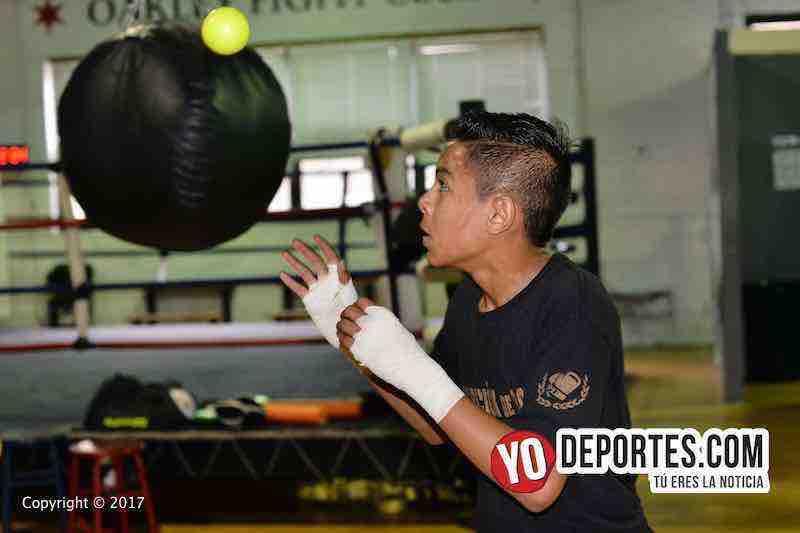 Copa Acopil Chicago 2017-boxeo mexicano