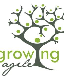 Top 33 Libros gratuitos y de pago Agile Agile Management Growing Agile