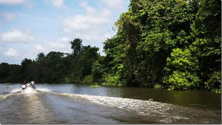 Orinoco-guyana