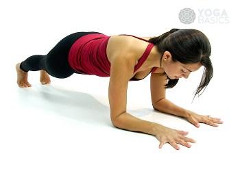 low plank • ardha Phalakasana