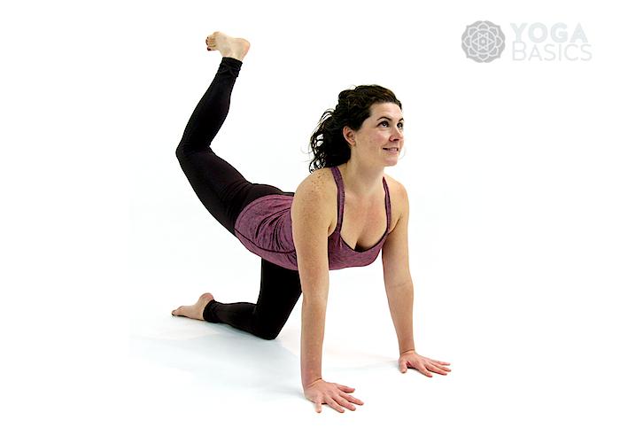 Tiger yoga pose • vyaghrasana