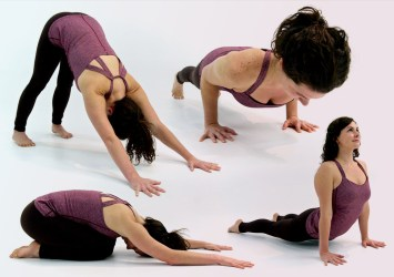 basic yoga pose sequence