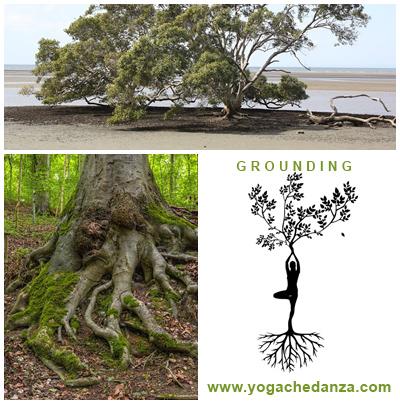 grounding radicamento
