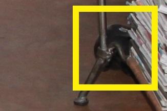 LBPD photo img_00028 detail