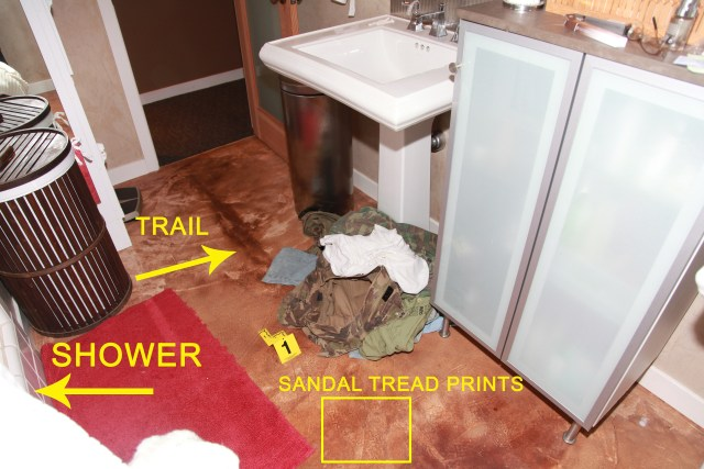 Bloodstains on the floor of the master bath?