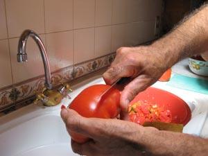 Tomata 1