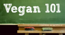 vegan 1011 Veganism for Beveganers: Why a Plant Based Diet IS For You