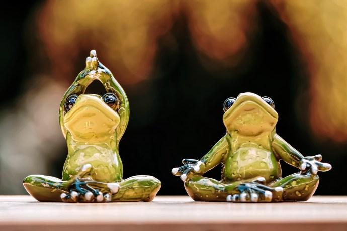 yogalab cours de yoga à crécy-la-chapelle