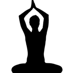 Relevant Mindful Media • Yoganomics®