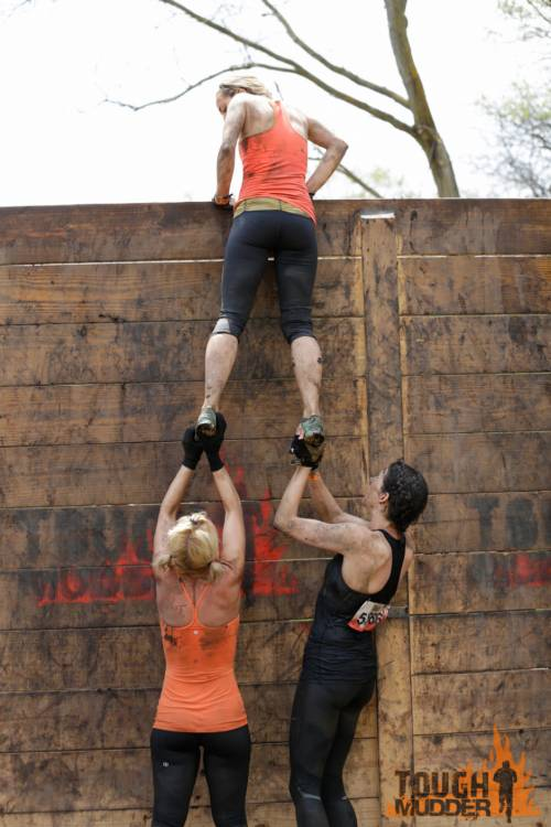 tough-mudder_berlin-walls_wall-boost_pull-up_teamwork