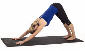 dog-posture-head-down-flexibility Yoga