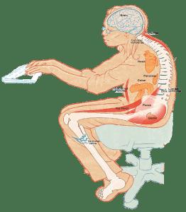 back-vault-work yoga