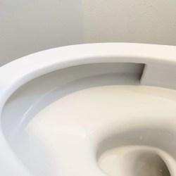 便器についたガンコな尿石をラクに落とす方法