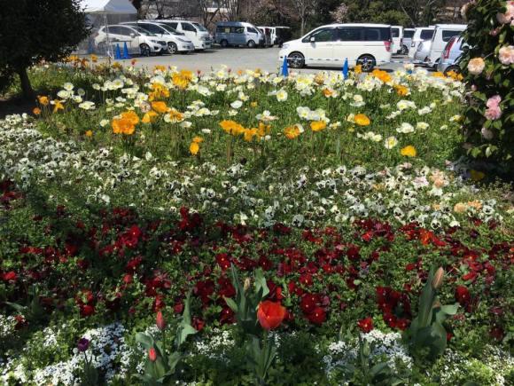 平和台陸上競技場入口付近の花壇