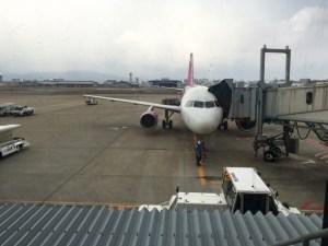 航空機peach
