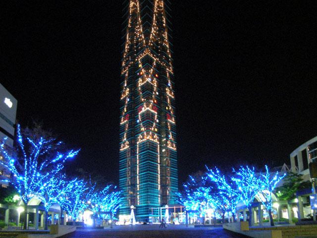福岡タワー前の木々