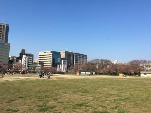 平和台の桜