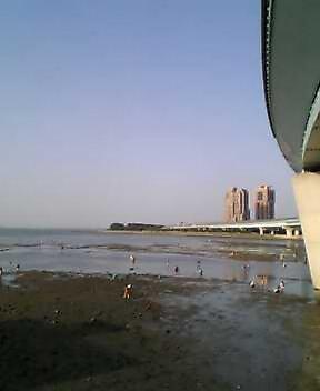 都市高速の橋の下から