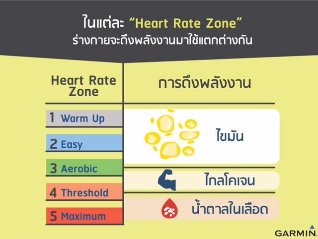 Infographic (6)