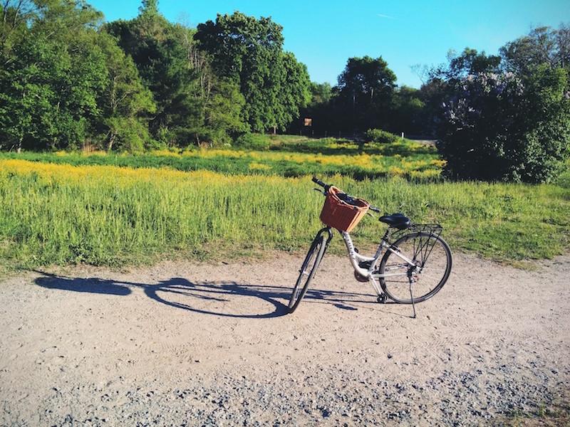 マサチューセッツならではのサイクリングロード
