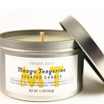 56879-mango-tangerine-candle