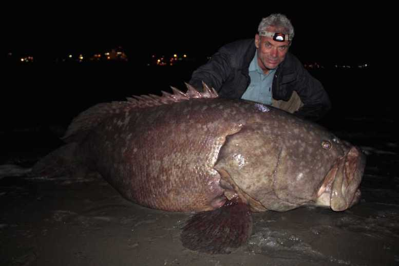 Jeremy with a Queensland Groper.