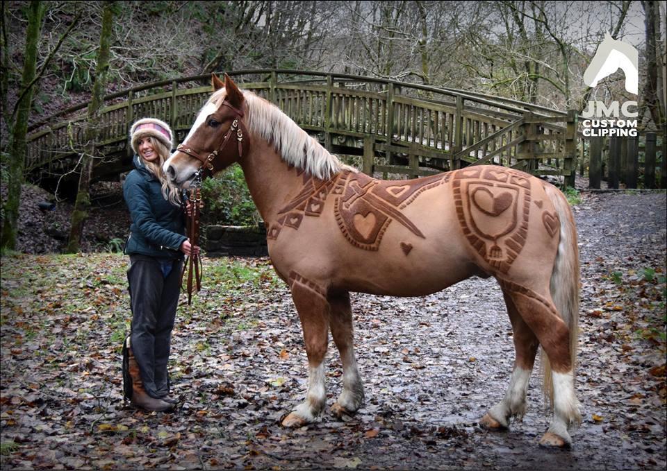 Anglijos mylimus žirgus išpuošė ištaigingais raštais yolo lt