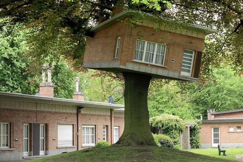 Neįtikėtini nameliai medyje iš įvairių pasaulio kampelių (4)