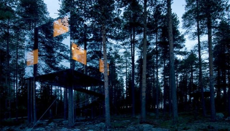 Neįtikėtini nameliai medyje iš įvairių pasaulio kampelių (9)
