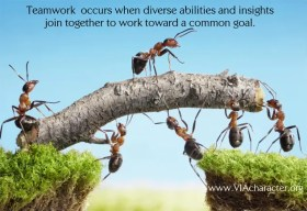 when there is teamwork and collaboration wonderful things can be achieved