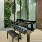Music & Greenery - A perfect match