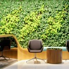 Beautiful Vertical Garden in Commercial Usage - Reception Area. Photo by YongHao Photography