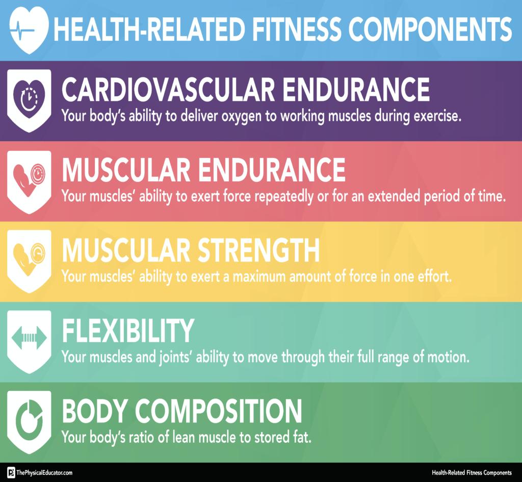 Paulus Daniel Fitness Types