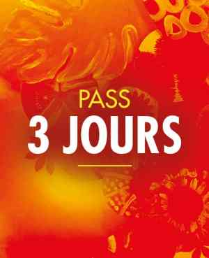 PASS 3 jours solidays 2020