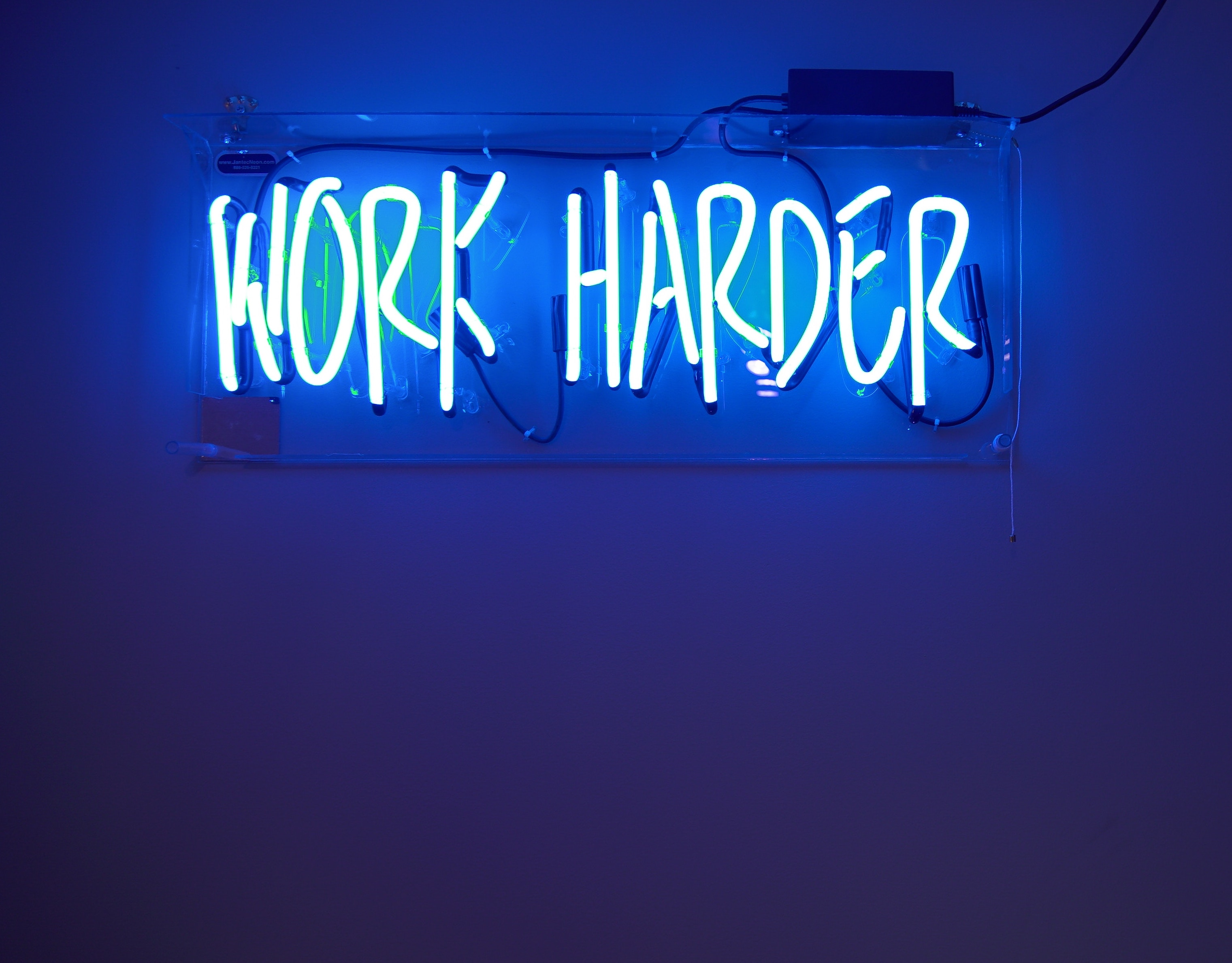 """A dark blue wall frames a harsh neon sign that just says, """"WORK HARDER"""""""