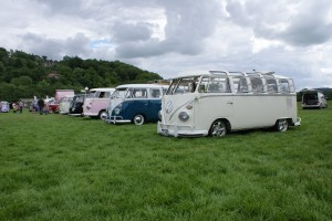 Some of the Show n Shine entrants