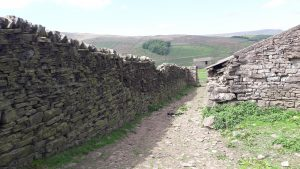 New Laithe Barn's tall wall would certainly provide welcome shelter for humans and animals in less fair conditions