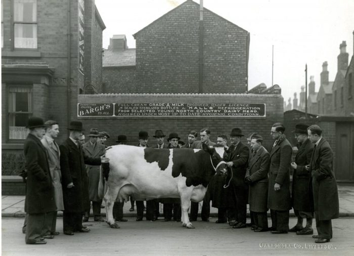 George Bargh's dairy, 134 Carisbrooke Road, Walton, Liverpool c1938