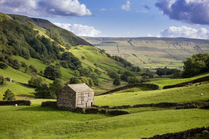 Beautiful scenery in Swaledale with stone barns dotted across the landscape